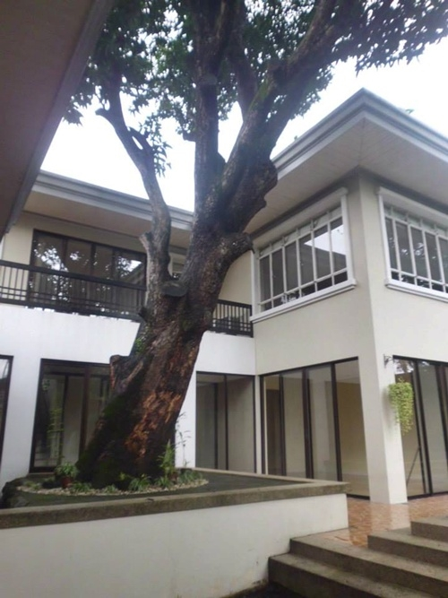 609sqm 4 Bedroom House For Rent In Ayala Alabang